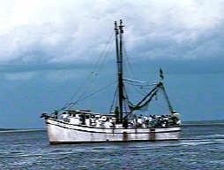 Gumpboat3n